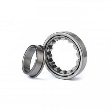 5.512 Inch | 140 Millimeter x 7.48 Inch | 190 Millimeter x 1.969 Inch | 50 Millimeter  CONSOLIDATED BEARING NNU-4928-KMS P/5  Cylindrical Roller Bearings