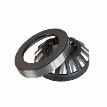 CONSOLIDATED BEARING WS-81126  Thrust Roller Bearing